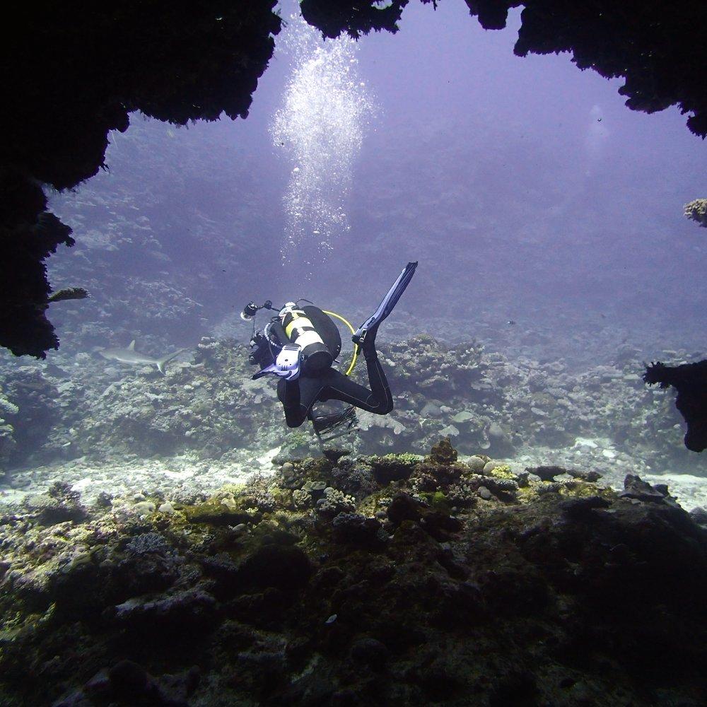 exiting swim-through.jpg