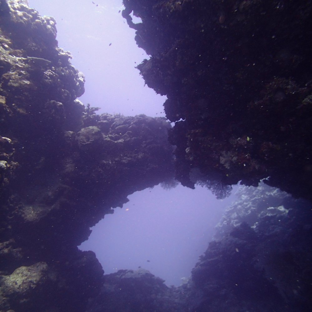 figure 8 swim-through.jpg
