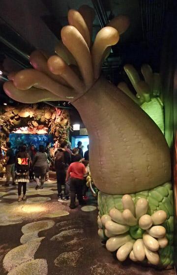 @ Shedd Aquarium