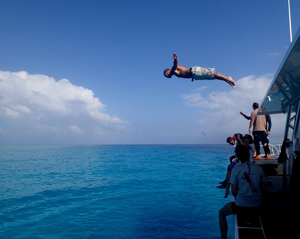 awesome dive.jpg