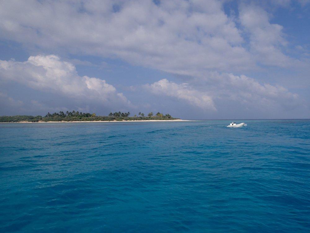 Surprise Island, 11-19-13.jpg