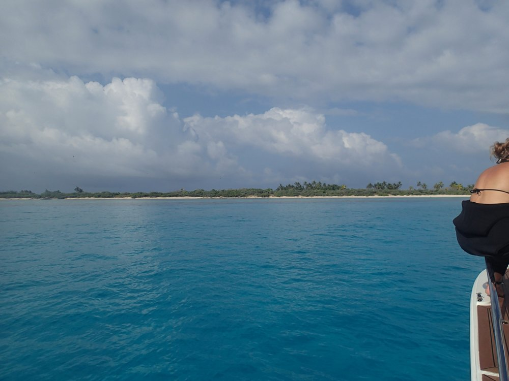 Alex and Surprise Island 11-19-13.jpg