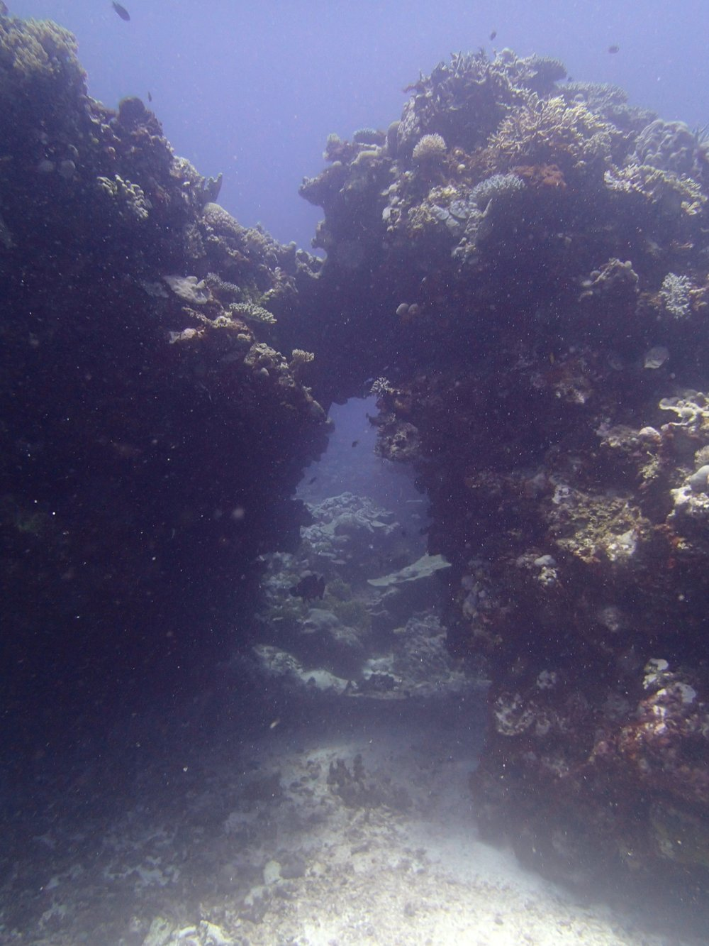 cool swim through.jpg