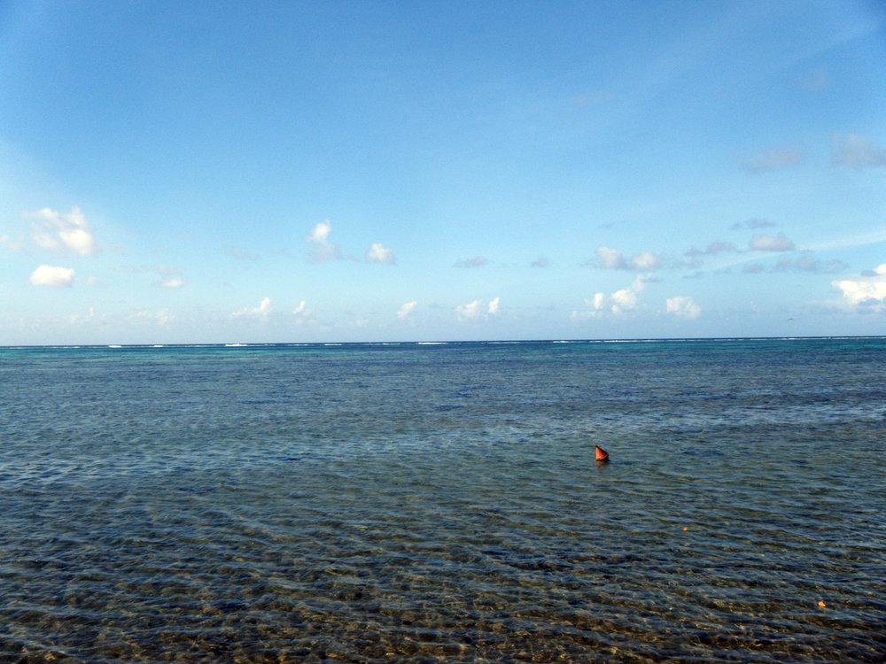 reef flat.jpg