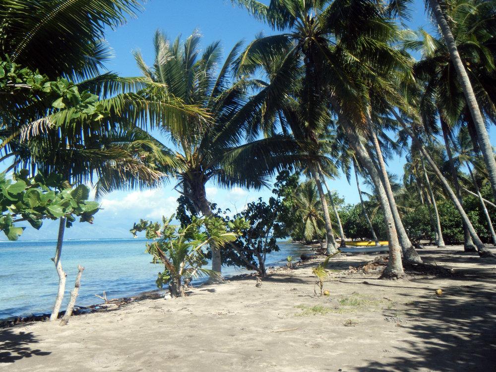 Moorean beach park.jpg