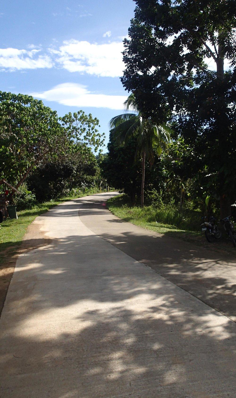 main Palawan highway.jpg