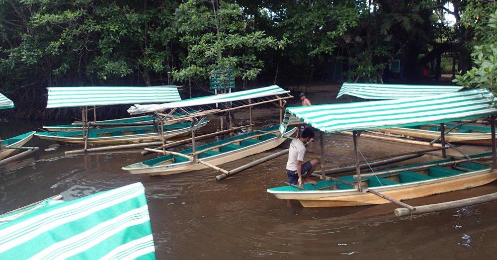 tourist paddle boats.jpg