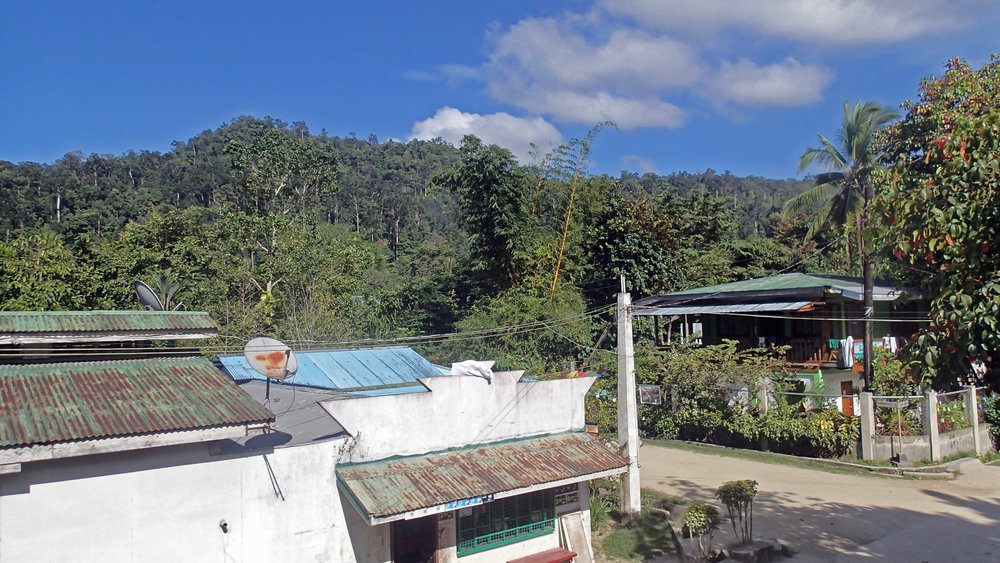 view from White Hauz Inn.jpg