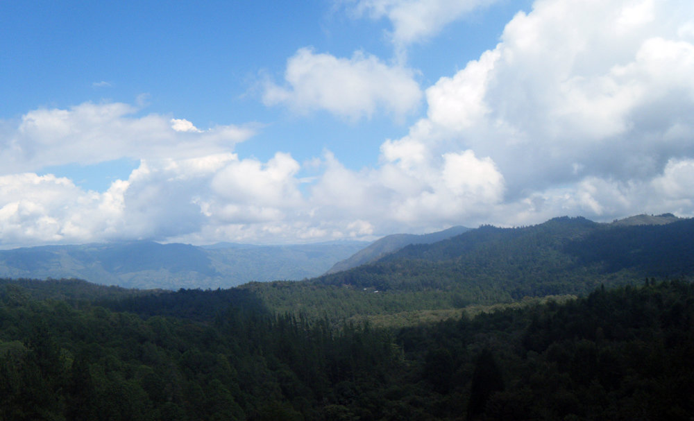 countryside around Medellin.jpg