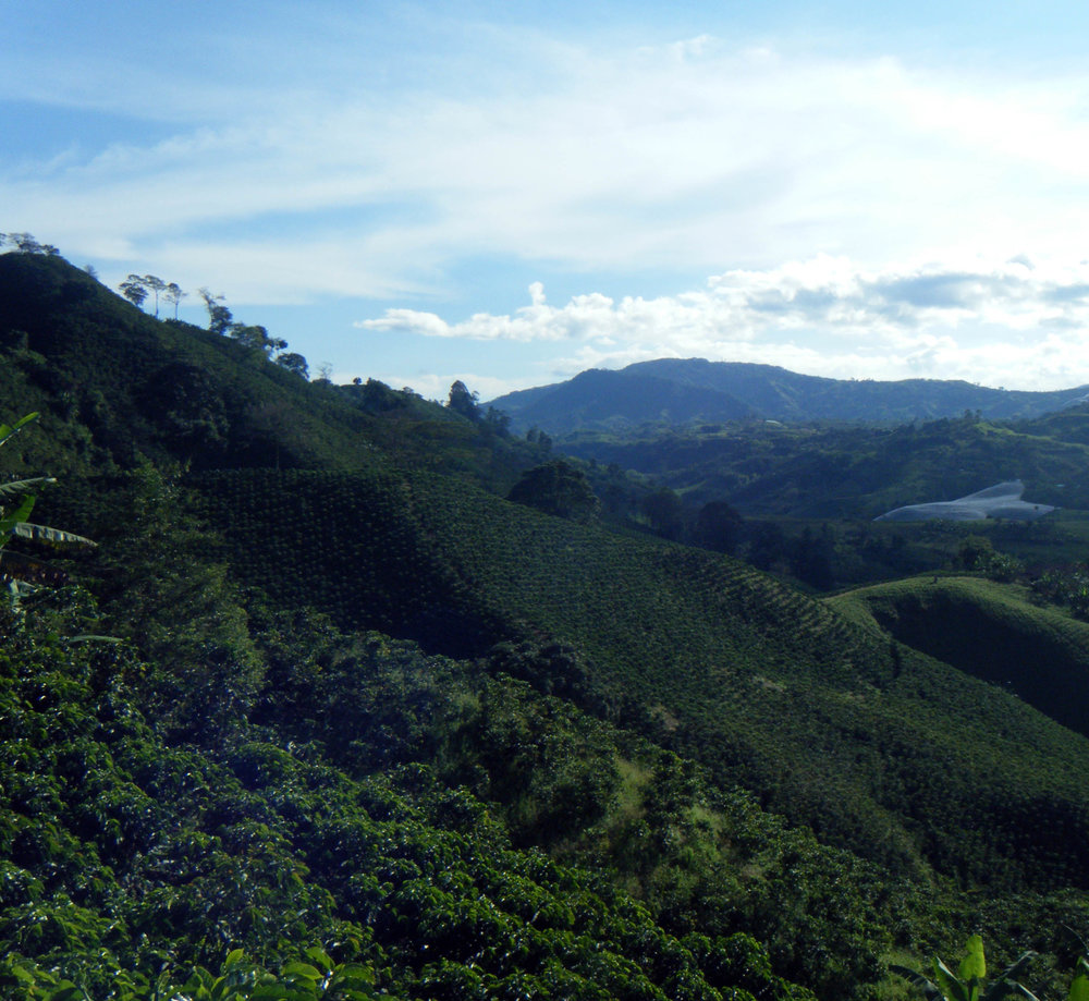 Colombia's heartland.jpg
