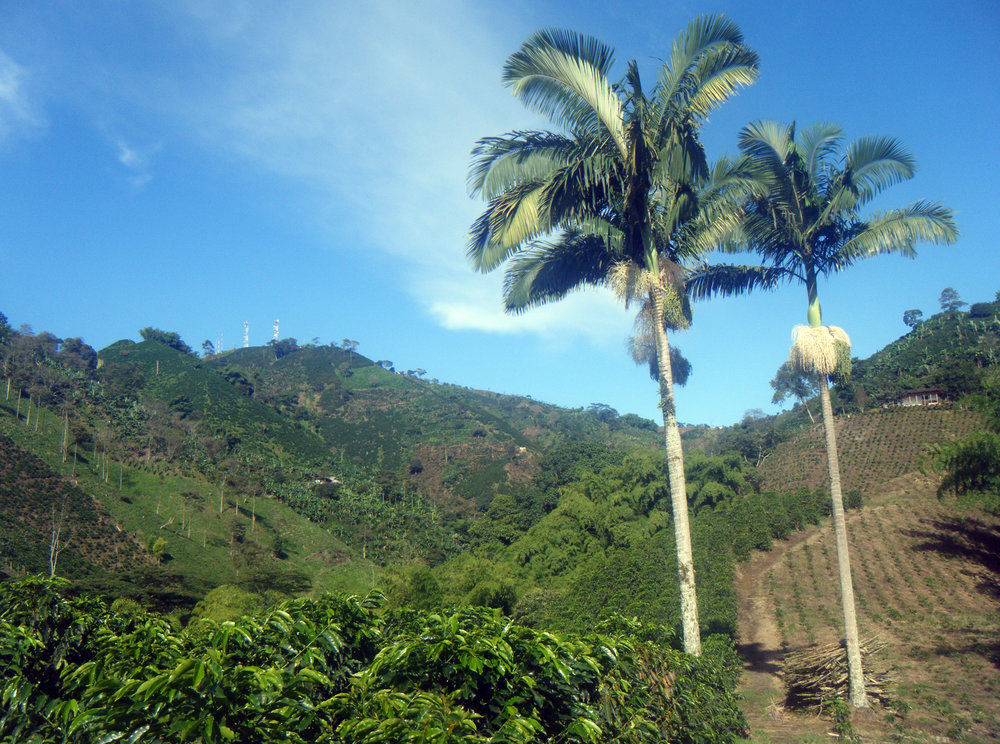 stunning northwestern Colombia.jpg
