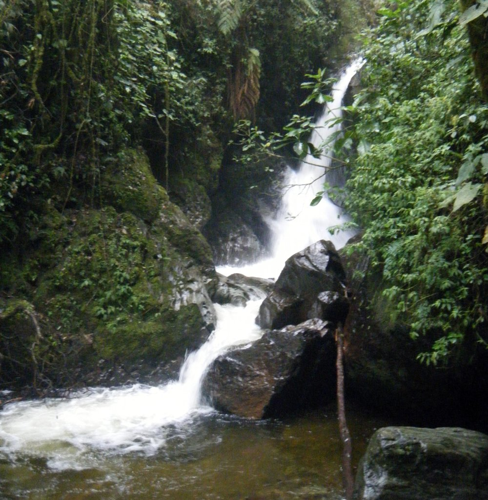 blurry waterfall.jpg