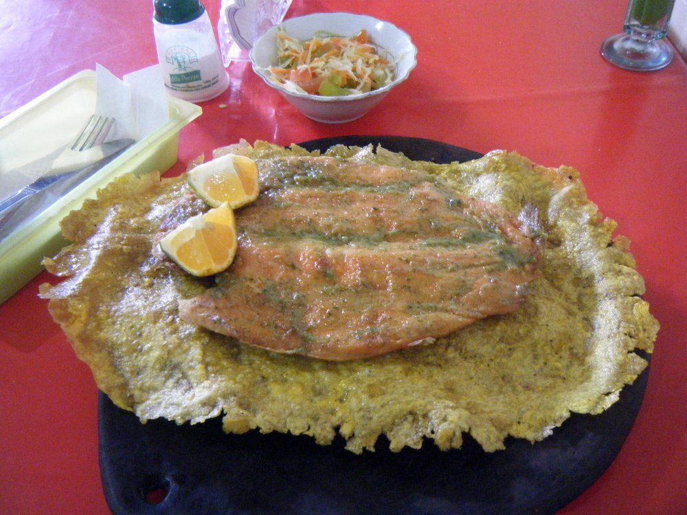 trout on a patacone.jpg