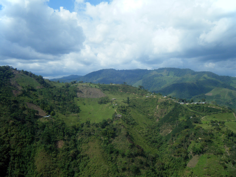 In the Andes.jpg