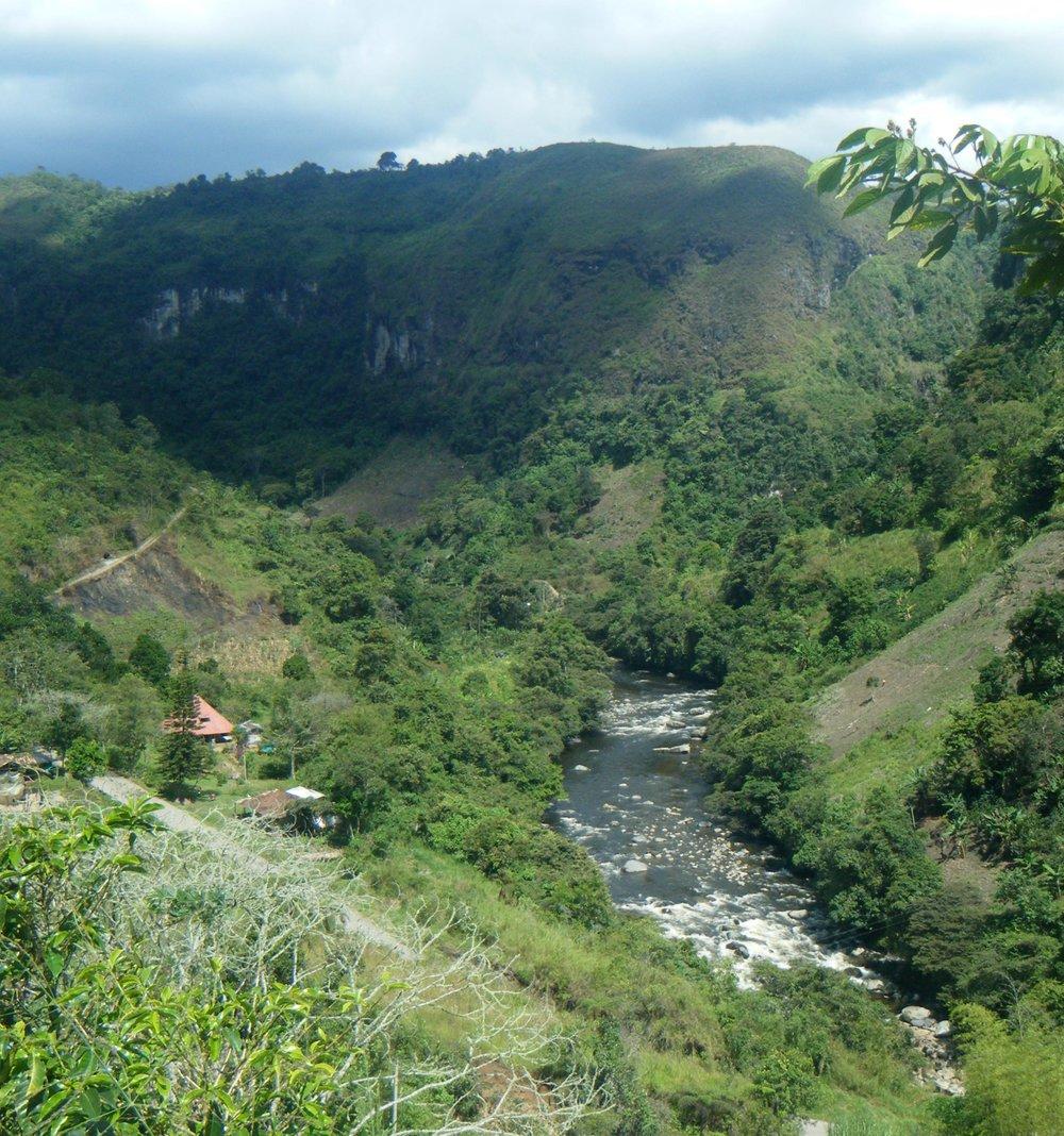 Rio Magdalena.jpg