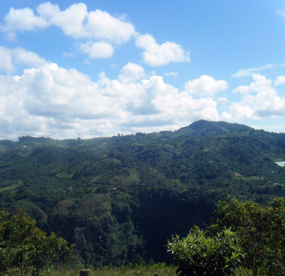 linda paisaje.jpg