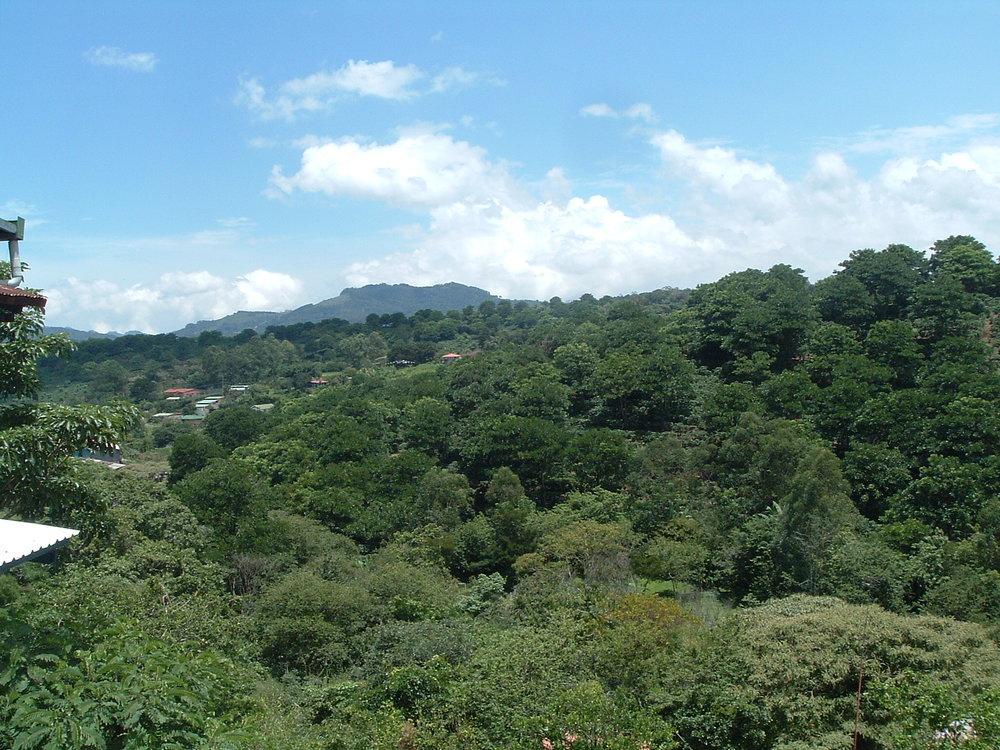 costaricapics 116.jpg
