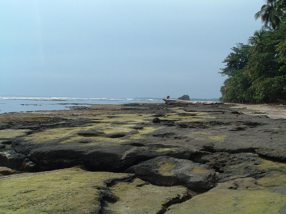 costaricapics 103.jpg