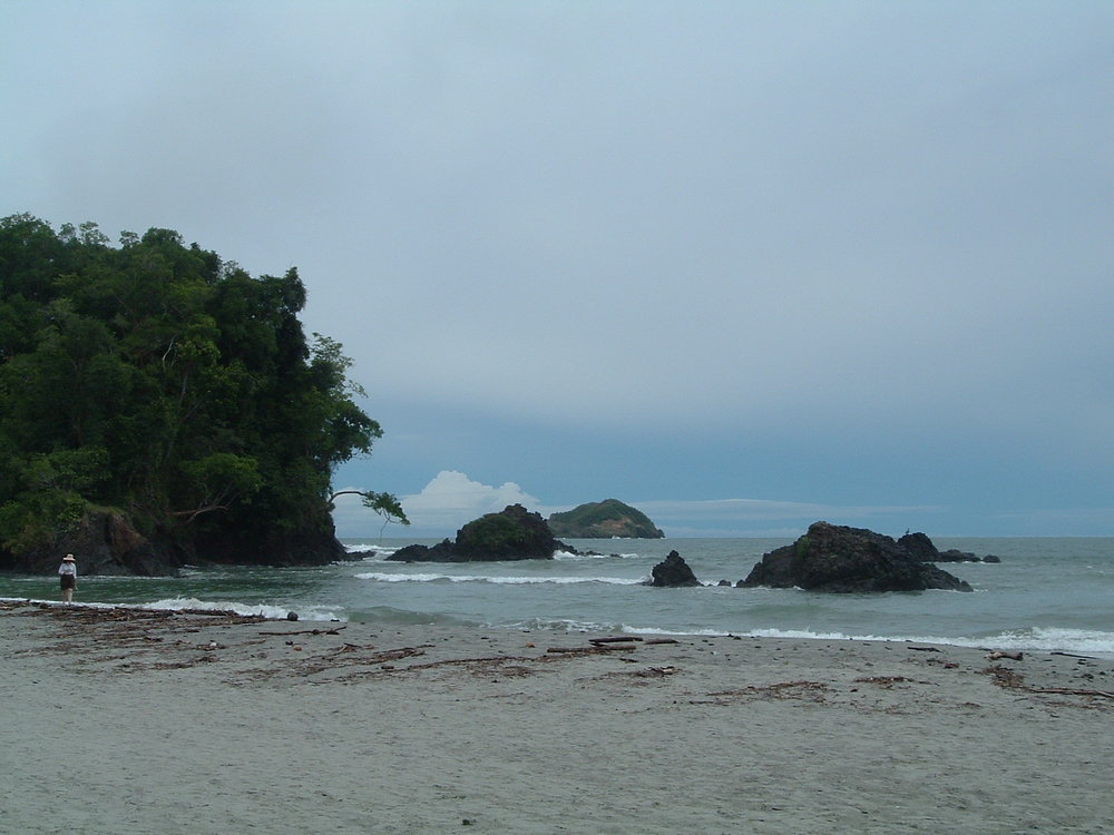 costaricapics 093.jpg