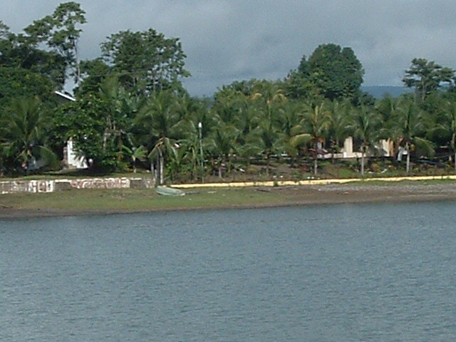 costaricapics 089.jpg