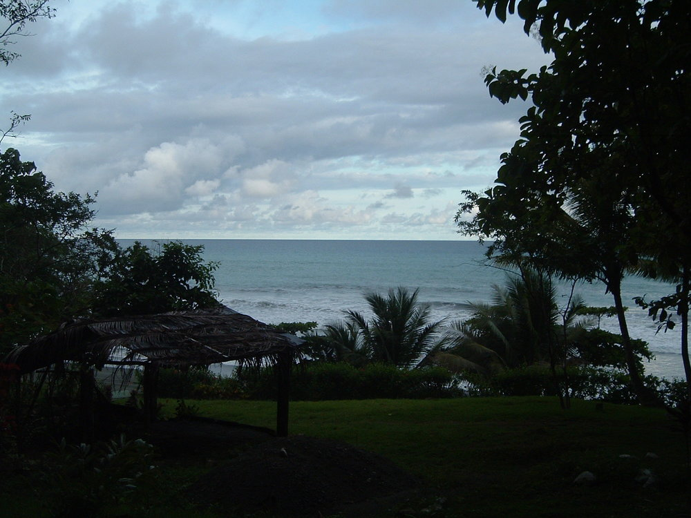 costaricapics 077.jpg