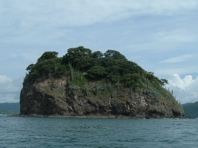 costaricapics 050.jpg
