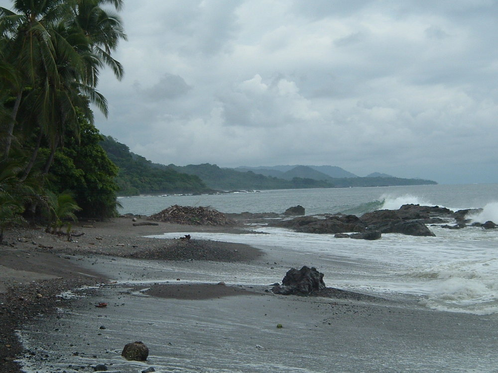 costaricapics 038.jpg