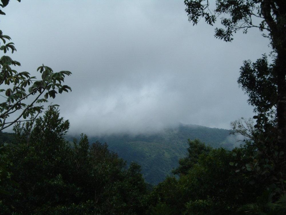 costaricapics 025.jpg