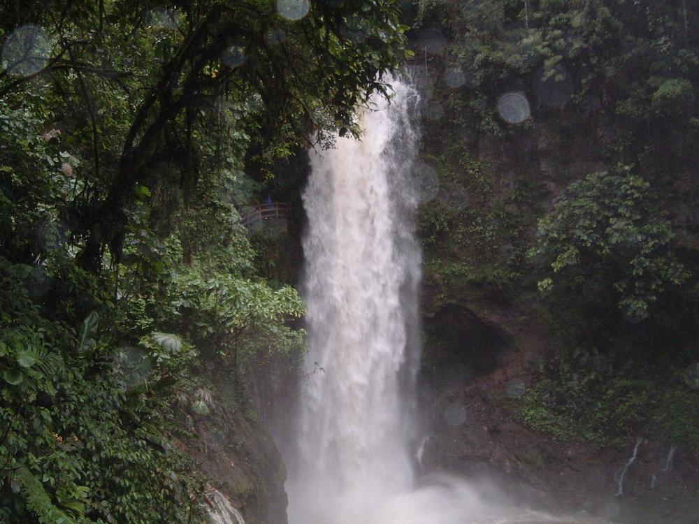 costaricapics 024.jpg