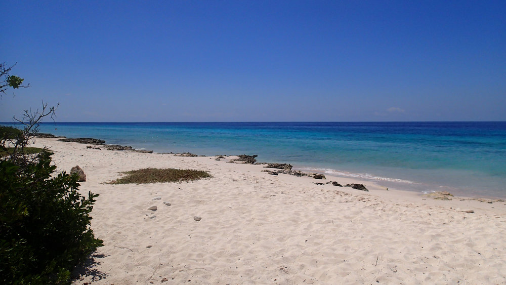 VB Beach.jpg