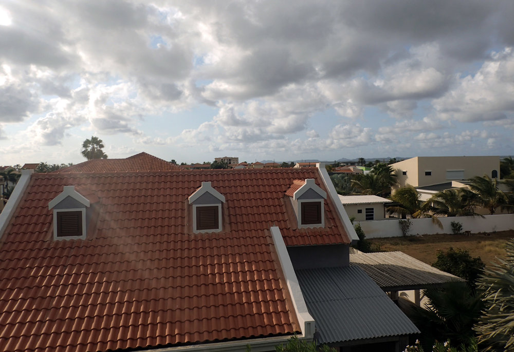 view from the roof.jpg