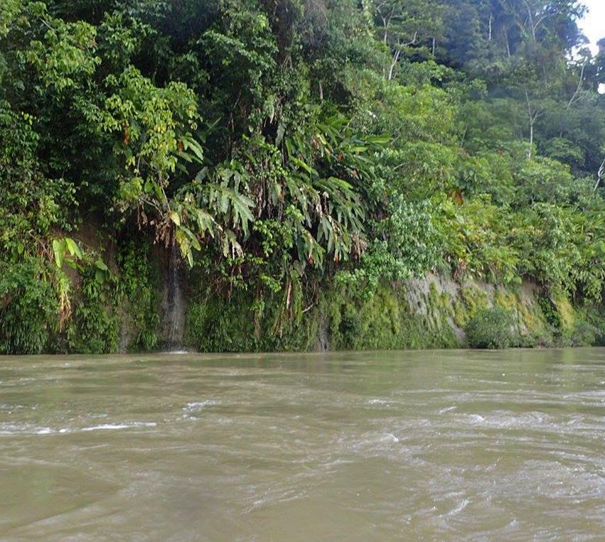 Amazon headwaters.jpg