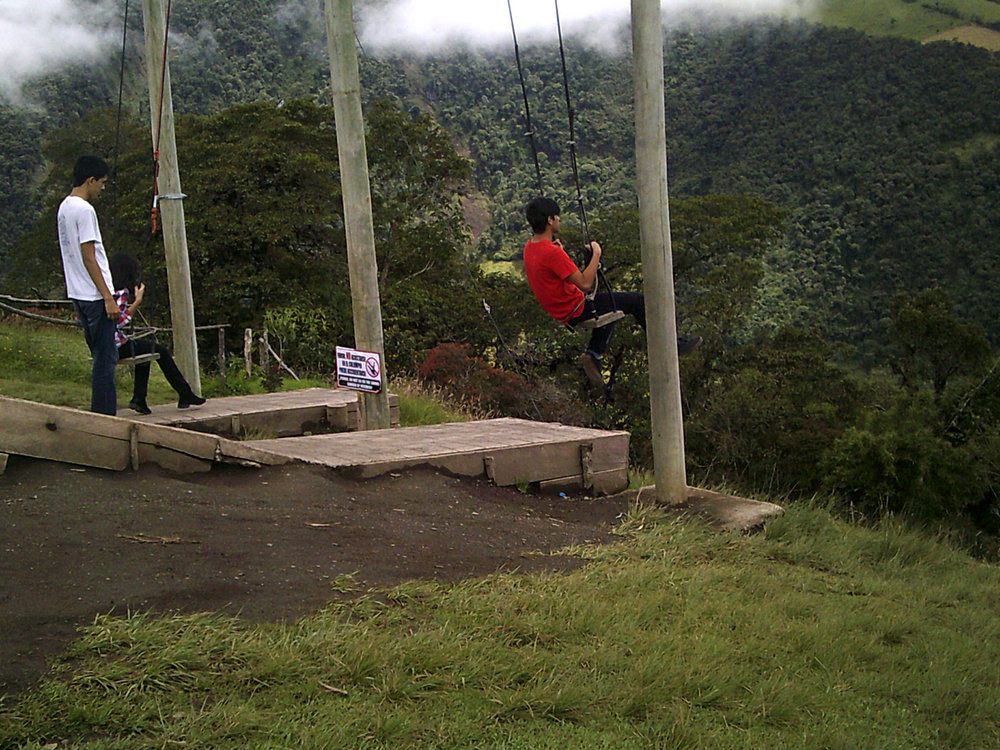 swings at the Tree House.jpg