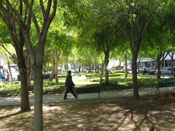 monterrey park 2.jpg