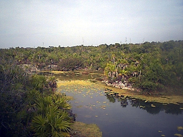 lagunalagartos.jpg