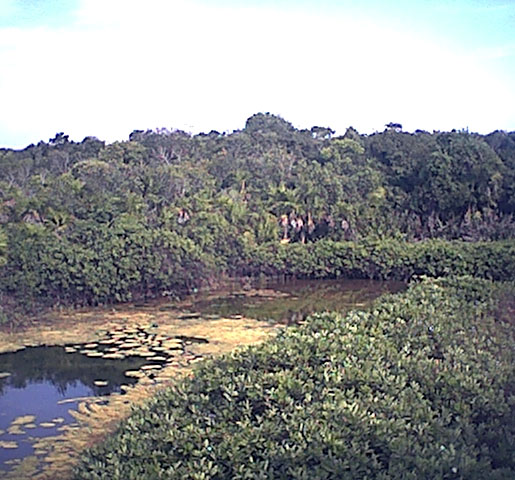 lagunalagartos2.jpg