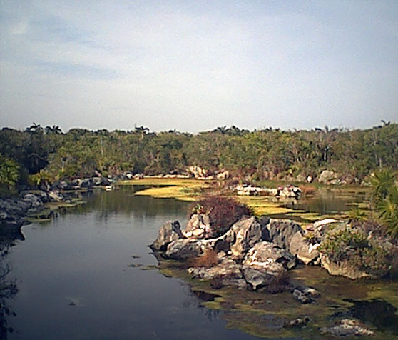 lagunalagartos6.jpg