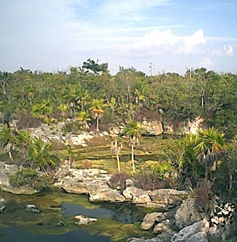 lagunalagartos5.jpg