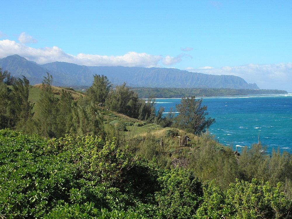 east coast kauai.jpg