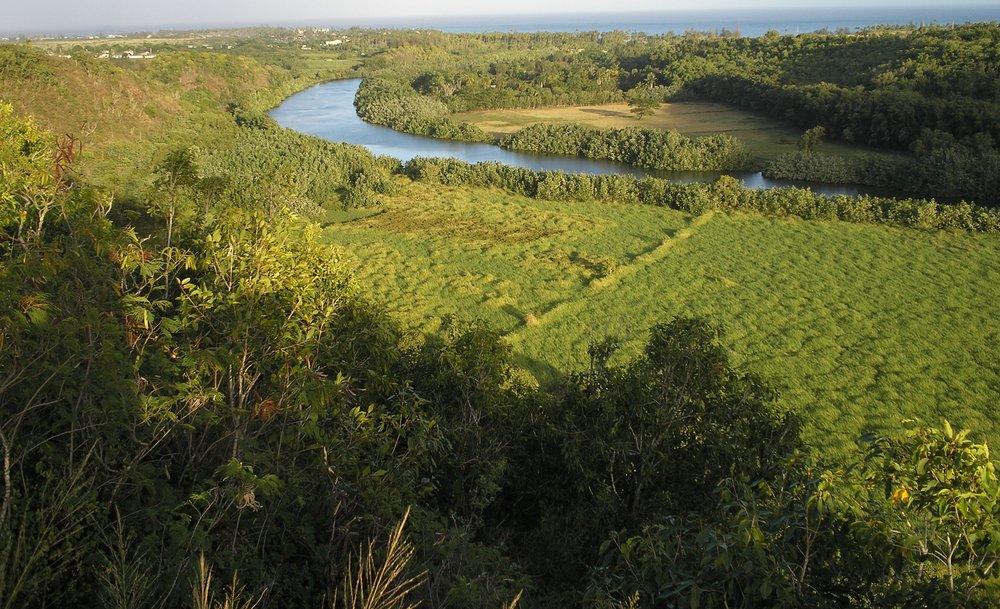 wailua river.JPG