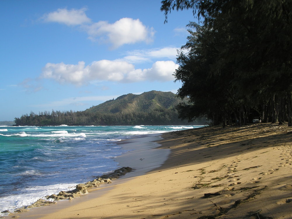 awesome north shore.jpg