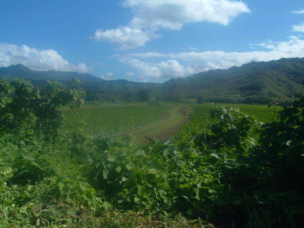 beautiful day on kauai.JPG