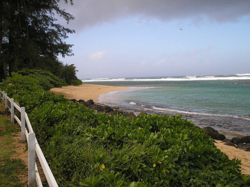 north shore from coffee shop.jpg