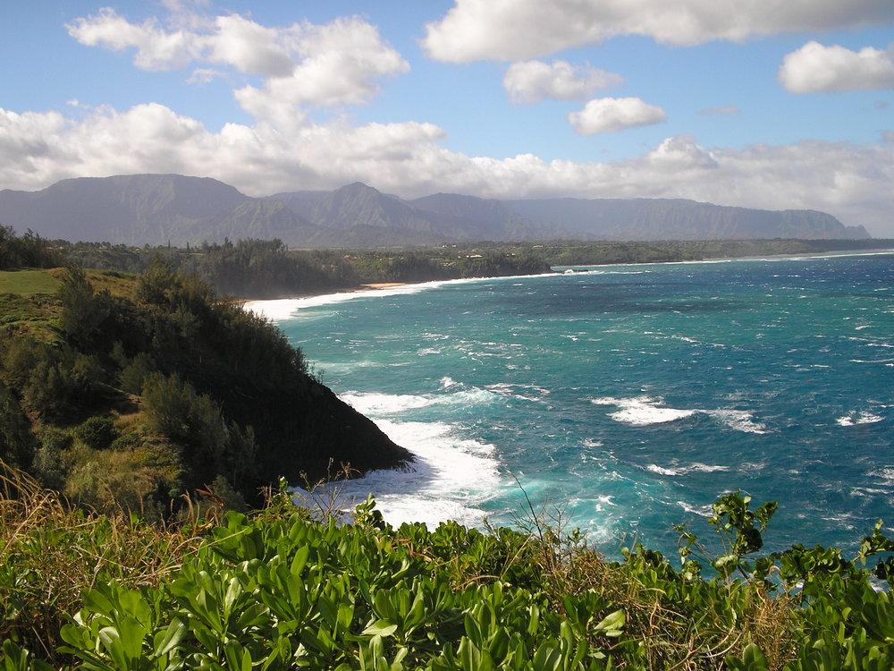 north shore kauai from kilauea point.jpg