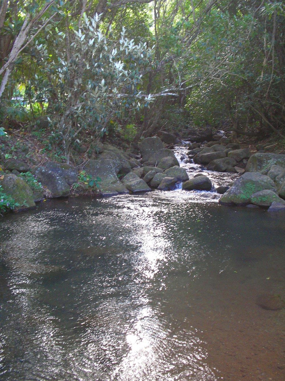 stream near kee.JPG