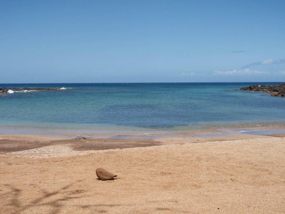 Dixie Maru beach.jpg