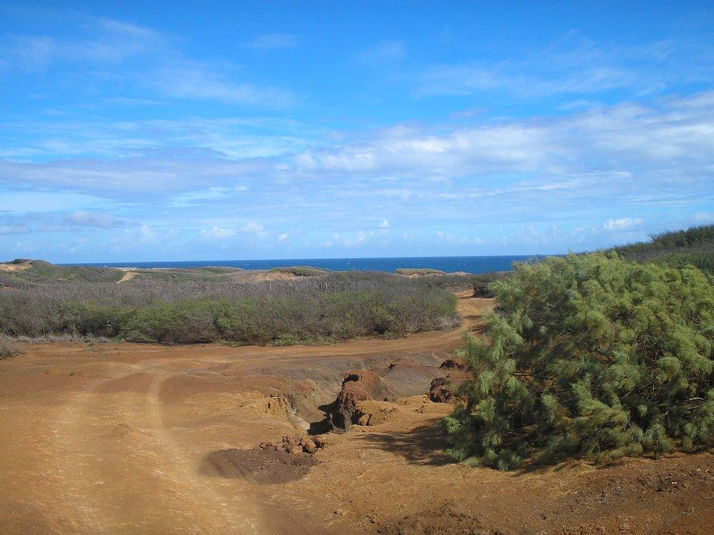 molokai ranch.jpg