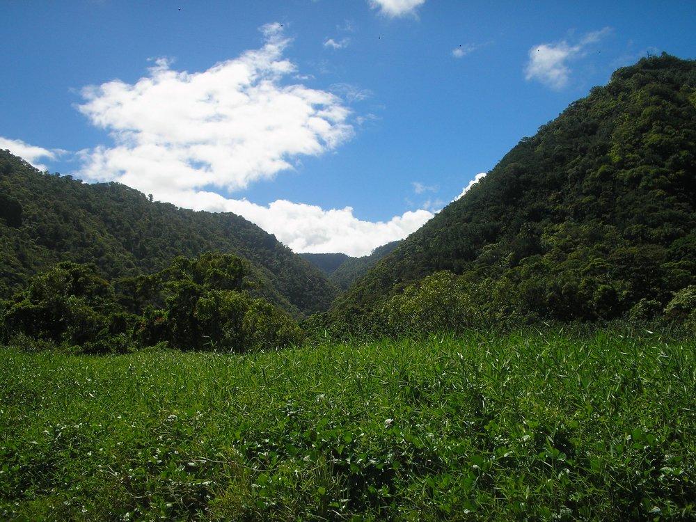 northeastern valley.jpg