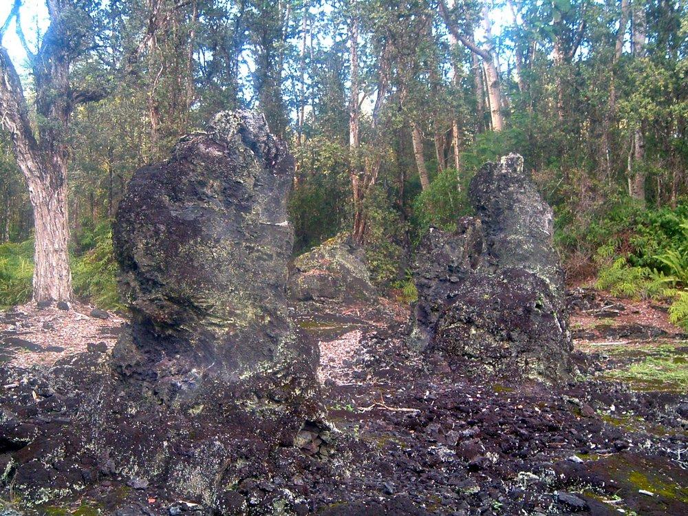 lava tree state monument.JPG