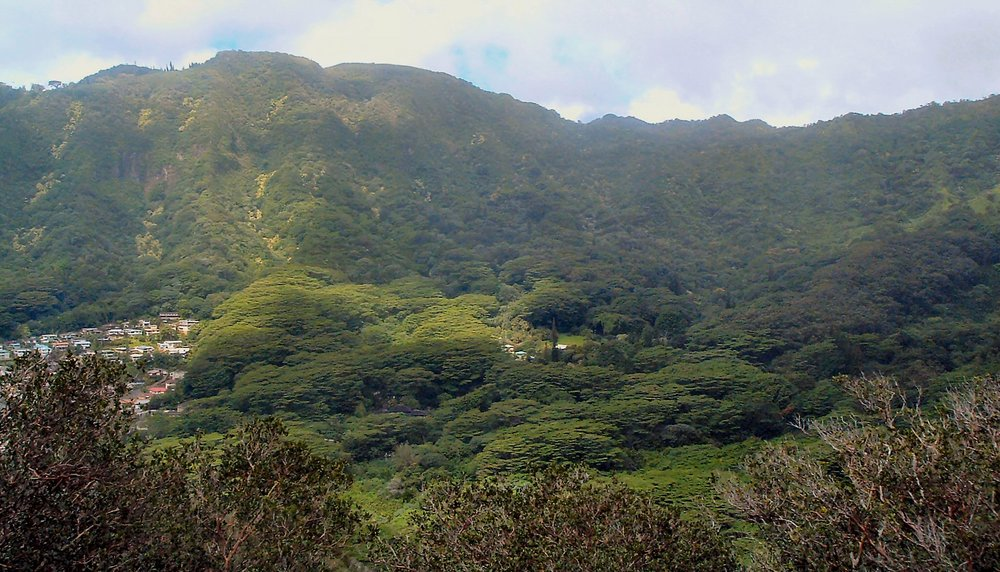 waahila ridge trail 10-10-04.jpg